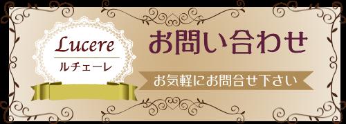 奈良のプードルのブリーダーはルチェーレがオススメです